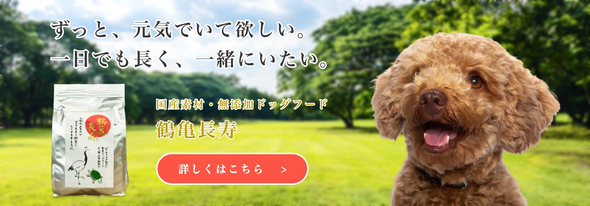 ずっと、元気でいて欲しい。一日でも長く、一緒にいたい。国 産ドッグフード鶴亀長寿について 詳しくはこちら